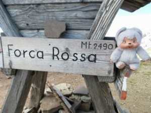 Our travel buddy Moncici at Forca Rossa