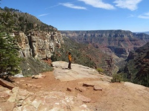 View point  near the North Rim