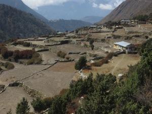 Village of Phortse spread on a mountain plateau