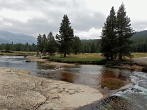 One of the forks of Tuolumne River