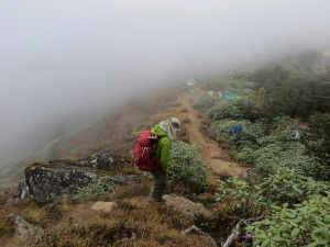 Acclimatization hike in Tengboche