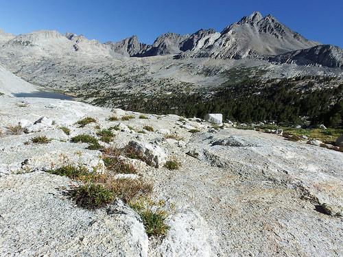 Trail towards Pinchott Pass