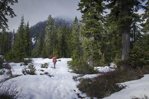 Strolling across Schrieber's Meadow