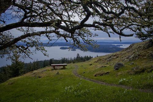 Morning Ridge Trail