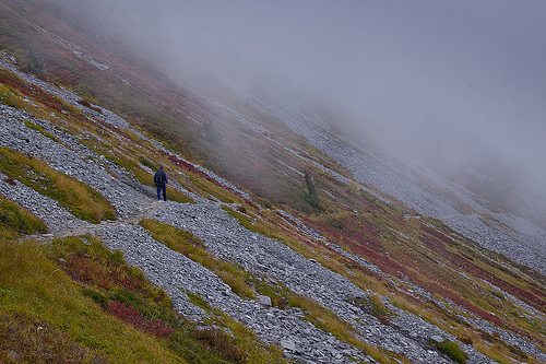 Fall colors  on an easy  traverse just few minutes from the trailhead